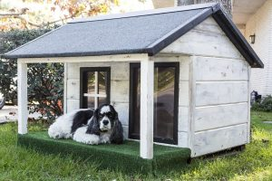 Wooden vs Brick Outdoor Dog House - Post Thumbnail