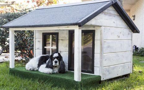Wooden vs Brick Outdoor Dog House - Post Thumbnail